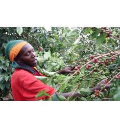 """Кофе """"Бурунди Ярама для фильтра"""" в зернах"""